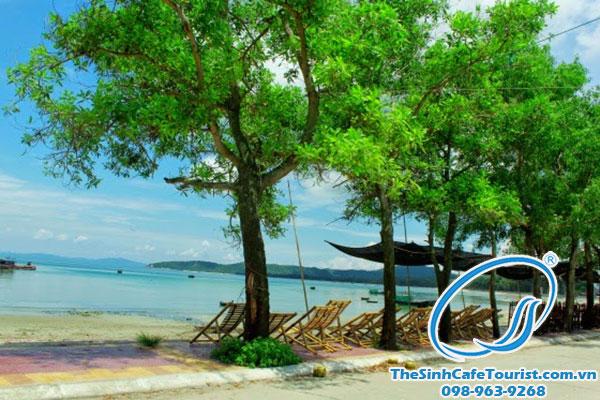 Tháng 3 nên đi du lịch ở đâu Miền Bắc Việt Nam?