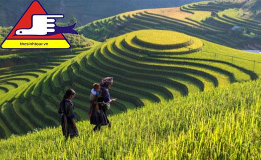 tháng 9 nên đi du lịch ở đâu Cát Cát Lao Chải Tả Van