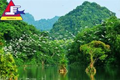 Tour Du Lịch Hoa Lư Tam Cốc Thung Nham 2 Ngày 1 đêm