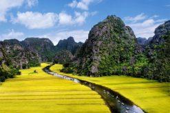 Tour Hoa Lư – Tràng An 1 Ngày