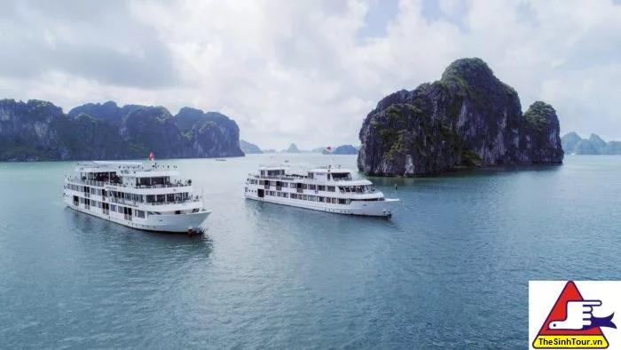 Athena Cruise Halong 15 E1534317381560